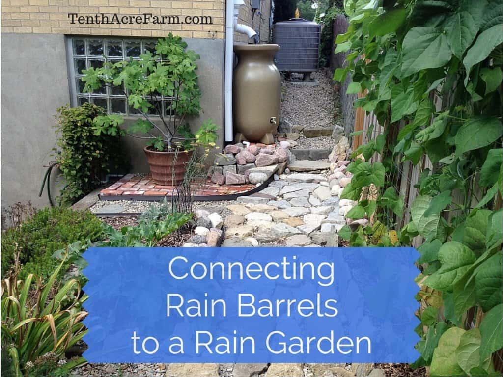 Connecting Rain Barrels to a Rain Garden