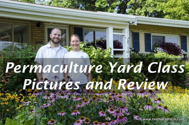 Permaculture Yard Class Pictures and Review