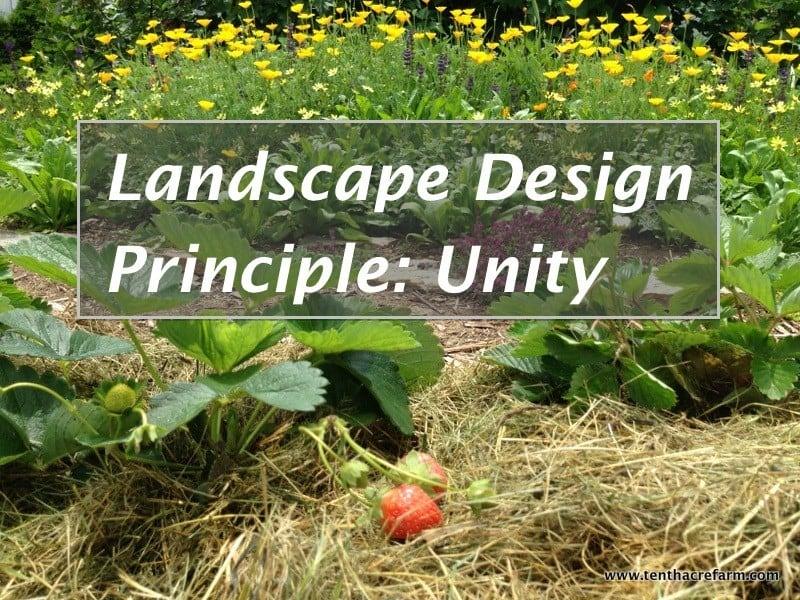 Garden design principles home design for Garden design principles