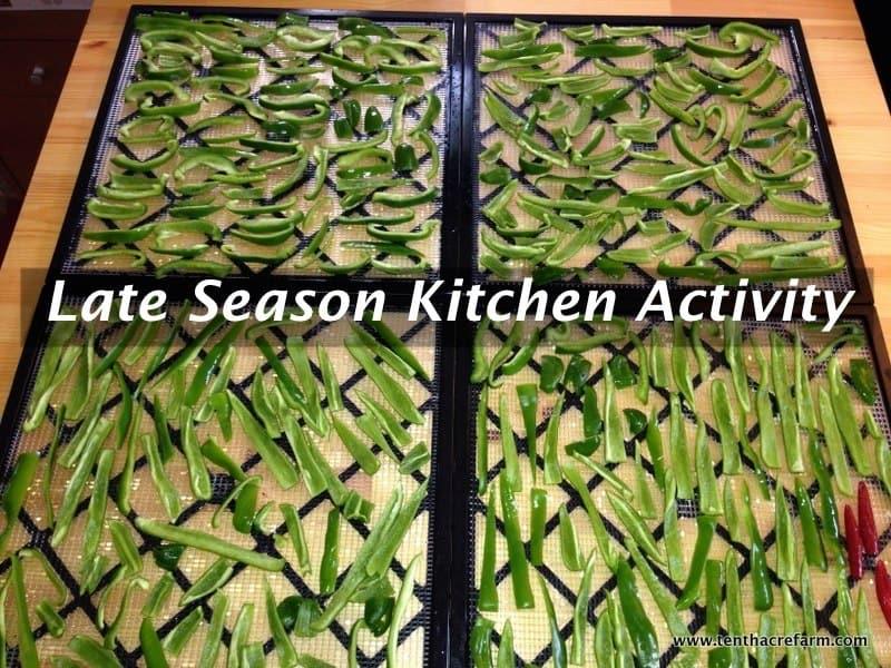 Late Season Kitchen Activity