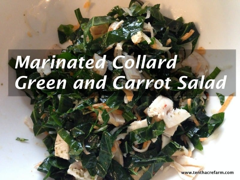 Marinated Collard Green and Carrot Salad