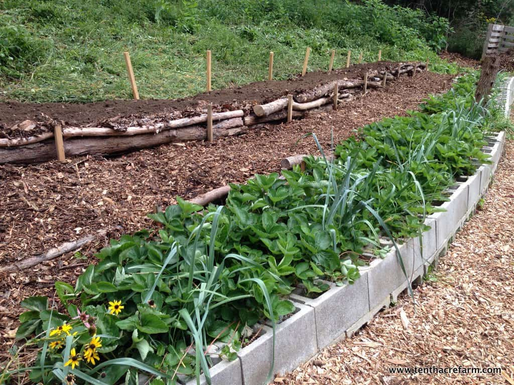 Here S A Quick Way To Terrace A Hill Tenth Acre Farm