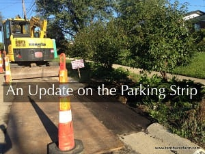 An Update on the Parking Strip