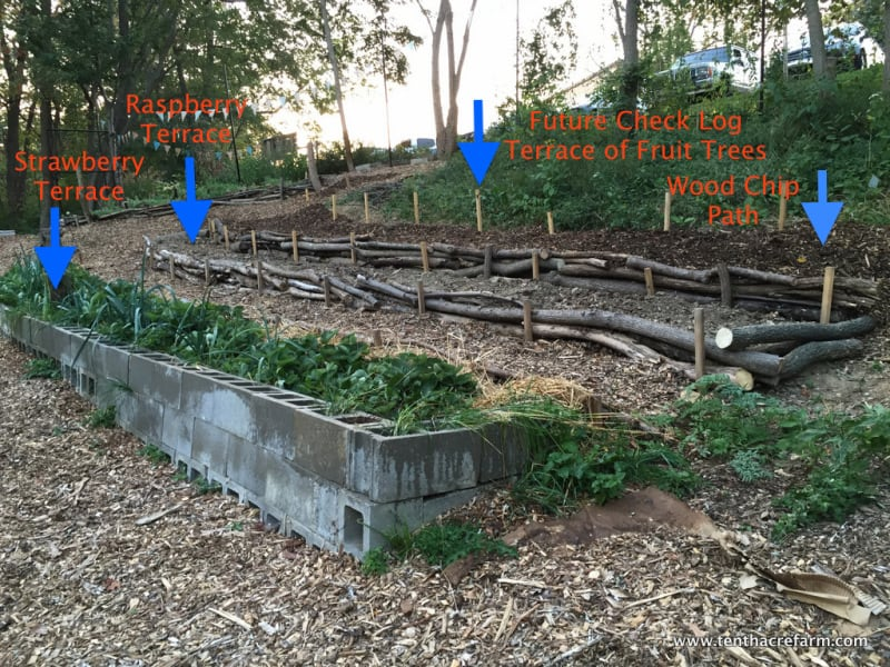 Here's a Quick Way to Terrace a Hill | Tenth Acre Farm
