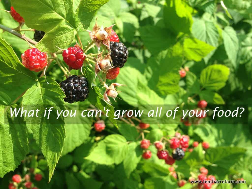 What if you can't grow all of your food?